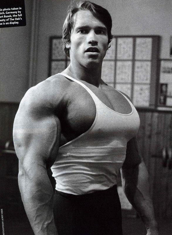 Arnold_Schwarzenegger_Massive_Chest